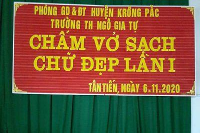 Các hoạt động nhà trường chào mừng ngày nhà giáo VN 20/11.